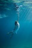 sous-marin Image libre de droits