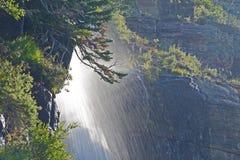 Sous une cascade en parc national de glacier Photographie stock libre de droits
