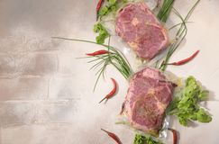 Sous Vide cooking concept. Vacuum packed ingredients arranged on light background. royalty free stock photography