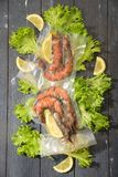 Sous Vide cooking concept. Vacuum packed ingredients arranged on wooden dyed background. royalty free stock images