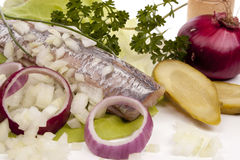 SOUSED HERRING Royalty Free Stock Image