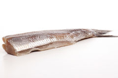 SOUSED HERRING Royalty Free Stock Images