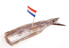 SOUSED HERRING stock photography