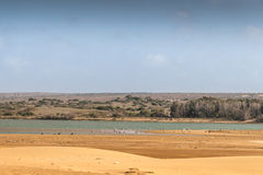 Souss Masa National Park Royalty Free Stock Photos