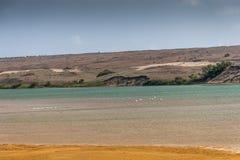 Souss Masa National Park Stock Photo