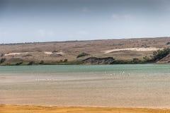 Souss Masa National Park Royalty Free Stock Photos