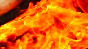 Soustrait le fond, fond chaud de flamme du feu de recherche de plan rapproché du clip 4k vidéo comme fond de résumés clips vidéos