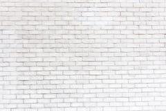 Soustrayez le vieux stuc souillé par texture superficiel par les agents gris-clair et avez vieilli le fond blanc de mur de brique photographie stock libre de droits
