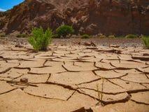 Sout sec Amérique de piment d'atacama de modèle de texture de la terre image stock