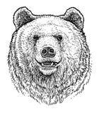 Soutenez l'illustration principale, dessin, gravure, encre, schéma, vecteur illustration stock