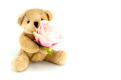 Soutenez la prise qu'un rose s'est levée pour un anniversaire ou une célébration de valentines Photo stock