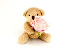 Soutenez la prise qu'un rose s'est levée pour un anniversaire ou une célébration de valentines Photos stock