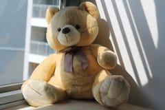 Soutenez le jouet se reposant par la fenêtre dans les ombres Photo stock