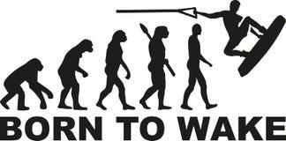 Soutenu pour réveiller wakeboarding illustration libre de droits
