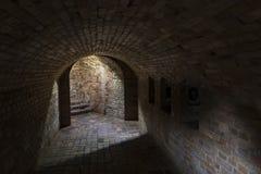 Souterrain industriel en Pologne Vieille cave Photo libre de droits