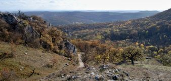Souteska klyfta i Palava kullar i södra Moravia Royaltyfria Foton