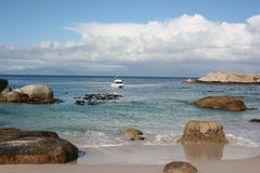South Africa boulders beach. Nature Stock Photography