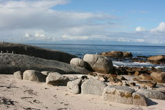 South Africa boulders beach. Nature Stock Image