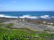 South Africa coast and sea Royalty Free Stock Photography