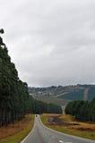 South Africa, East, Mpumalanga province, road, landscape. South Africa, 01/10/2009: african landscape seen from a road in the Mpumalanga, the eastern province Royalty Free Stock Photo