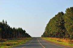 South Africa, East, Mpumalanga province, road, landscape. South Africa, 01/10/2009: african landscape seen from a road in the Mpumalanga, the eastern province Stock Photo