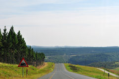 South Africa, East, Mpumalanga province, road, freedom, woods, landscape. South Africa, 01/10/2009: african landscape seen from a road in the Mpumalanga, the Royalty Free Stock Photo