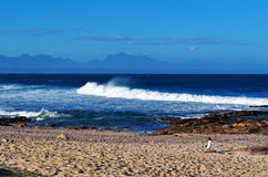 South Africa, Garden Route, Mossel Bay Royalty Free Stock Photos