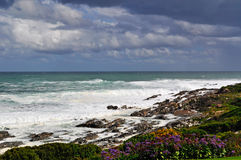 South Africa, Garden Route, beach, waves, fynbos. South Africa, 21/09/2009: stormy Ocean and weather on the rocky beach of Hermanus, a town on the southern coast Stock Images
