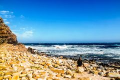 South Africa - 2011: a girl sits and admires waves at Cape Of Good Hope royalty free stock photography