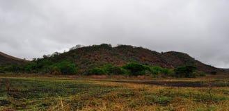South Africa, Hluhluwe Imfolozi Game Reserve, KwaZulu-Natal Royalty Free Stock Photo