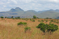 South Africa Landscape. Scenic view of South Africa on a cloudy day Royalty Free Stock Photography