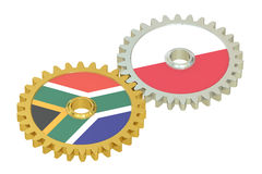 South Africa and Poland flags on a gears, 3D rendering. Isolated on white background Stock Images