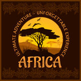 South Africa - unforgettable trip. South Africa - unforgettable adventure trip. Vector illustration Stock Images