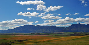 South Africa, Western Cape, Cape Peninsula Royalty Free Stock Images