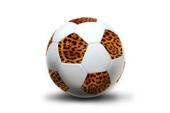 South Africa world cup Stock Images