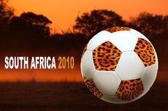 South Africa world cup Royalty Free Stock Photo