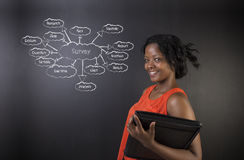South African or African American woman teacher or student against blackboard survey diagram concept Stock Photos