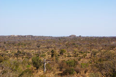 South african bush and stone hills Royalty Free Stock Image