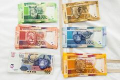South African colorful banknotes money. BIG Five animals