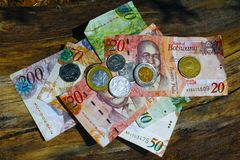 South african countries banknotes and coins for background. Botswana pula