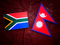 South African flag with Nepali flag on a tree stump isolated. South African flag with Nepali flag on a tree stump stock photography
