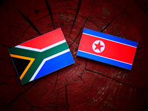 South African flag with North Korean flag on a tree stump royalty free stock photo