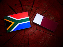 South African flag with Qatari flag on a tree stump isolated. South African flag with Qatari flag on a tree stump stock photos