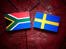South African flag with Swedish flag on a tree stump stock photos