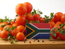 South African flag on a wooden panel with tomatoes isolated on a. White background stock photography