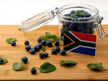 South African flag on a wooden plank with blueberries o. N white stock photography