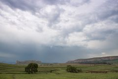 Green Eastern Freestate landscape with a stormy sky. South African Free-state Landscape with willow tree with a stormy sky and willow trees stock photo