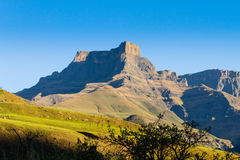South African landmark, Amphitheatre from Royal Natal National P Stock Image