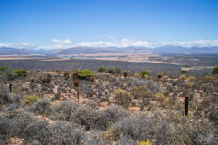 South African Landscape with Mountains, Bushes and Plains Royalty Free Stock Photography