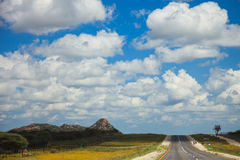 South African road through the savannas and deserts with marking Stock Image